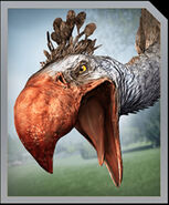IMG Phorusrhacos Jurassic world alive