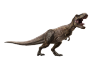 Jurassic world fallen kingdom tyrannosaurus v5 by sonichedgehog2-dceqjc6