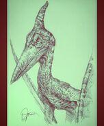 Pteranodon 18949485 470204193334004 825491816643035136 n