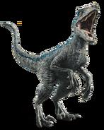 Fallen kingdom blue the velociraptor by sonichedgehog2-dc80trd