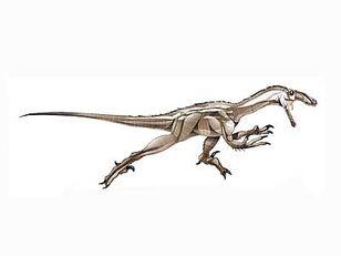 Dc card pyroraptor big.jpg