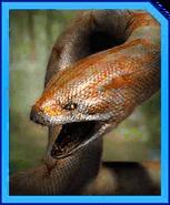 Titanoboa Gen 2-icon