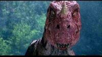 Ceratosaurus1.jpg