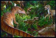 Raptors vs junior