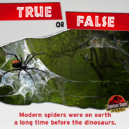 True or False spiders been around before dinosaurs
