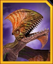 Dimodactylus profile