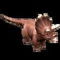 Triceratops-Render