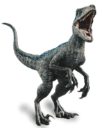 Jurassic world fallen kingdom velociraptor blue by sonichedgehog2-dc80trd