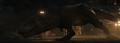 Compsognathus and Tyrannosaurus