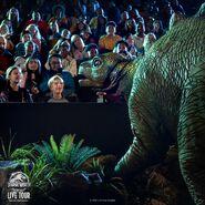 Stegosaur alive