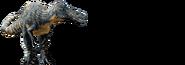 Suchomimus-info-graphic