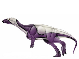 Parksosaurus