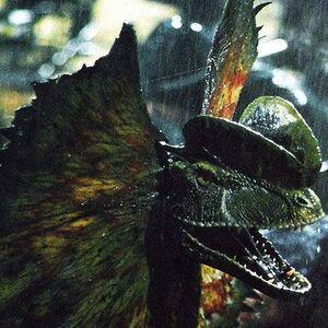 Dilophosaurus Jurassic Park Wiki Fandom Dinosaurios de todo tipo los malos como el t. dilophosaurus jurassic park wiki fandom