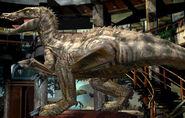 Suchomimus jup-582
