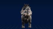 SinoceratopsWebsite