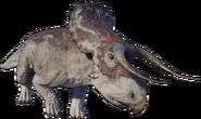 Nasutoceratops 2