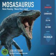 Mosasaurus DPG