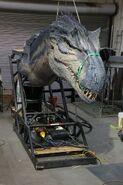 BABR Allosaurus Animatronic
