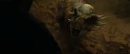Stygimoloch Bellow