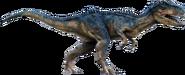 AdultAllosaurus