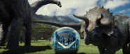 Triceratops and apatosaurs in the Gyrosphere valley.