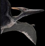 Pteranodon jp3 render