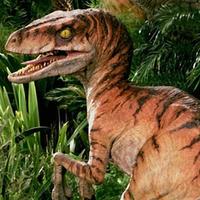 Velociraptor v1 Male Crop-300x300.png