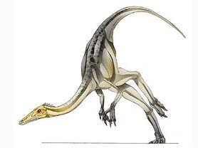 Dc card sanchusaurus big.jpg