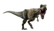 Jurassic world fallen kingdom tyrannosaurus v4 by sonichedgehog2-dcdwz0j