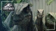 The Science of the Strike Velociraptor Jurassic World