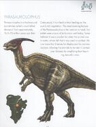 Parasaur guide