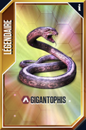 Gigantophis (The Game)