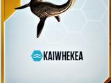 Kaiwhekea