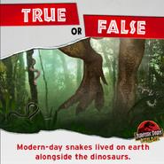 True or False snakes lived alongside the dinosaurs