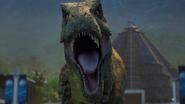 Dino closing in