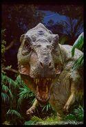 Rex tlw3