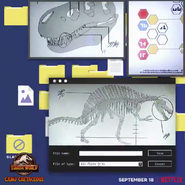 Filescampcretaceous