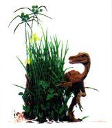 Segavelociraptor