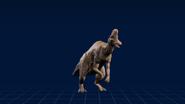 Corythosaurus research