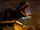 Scorpius rex E750