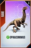 Ophicomimus card