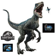15-17407 nbc uni jurassic world 2 blue raptor fathead jr rm31-2 pdp