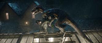 Combat Blue vs Indoraptor 3