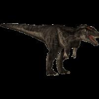 Carcharodontosaurus JPOG