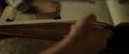 MaisieTakingBook