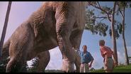 Этодинозавр