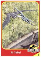Pteranodon collector card