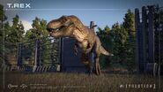 Wild rex