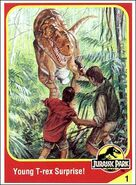 Young trex collector card