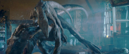 Combat Blue vs Indoraptor 2